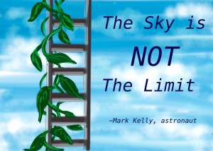 sky is not the limit